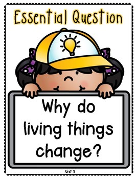 Benchmark Advance 1st Grade Essential Question Posters
