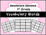 Benchmark Advance 1st Grade Vocabulary Words Flash Cards