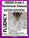 Benchmark Advance Fluency 2nd Grade FREEBIE