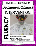 Benchmark Advance Fluency 2nd Grade FREEBIE