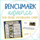 Benchmark Advance 2nd Grade Vocabulary Word, Picture & Definition Cards Unit 7