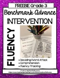 Benchmark Advance 3rd Grade, Freebie