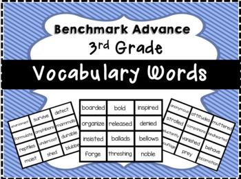 Benchmark Advance 3rd Grade Vocabulary Words Flash Cards