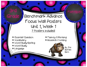 Benchmark Advance 3rd (THIRD) Grade Focus Wall Posters FREEBIE