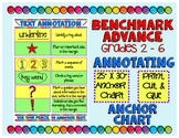 Benchmark Advance 5th Grade Annotation Anchor Chart (California and National)