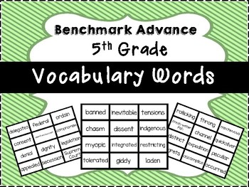 Benchmark Advance 5th Grade Vocabulary Words Flash Cards