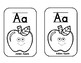 Benchmark Advance ABC Cards & Coloring Book