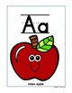 8 Benchmark Advance ABC and Long Vowel Frieze Cards (2 versions)