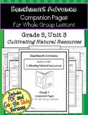 Benchmark Advance Companion Pages * Grade 5, Unit 3 *GOOGLE and PDF VERSION!