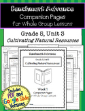 Benchmark Advance Companion Pages * Grade 5, Unit 3