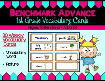 Benchmark Advance First (1st) Grade Weekly Vocabulary Cards Units 1 - 10