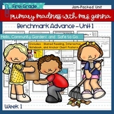 Benchmark Advance - First Grade UNIT 1 with Depth and Complexity Week 1