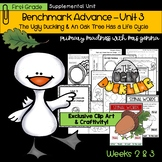 Benchmark Advance First Grade Unit 3 with Depth and Complexity