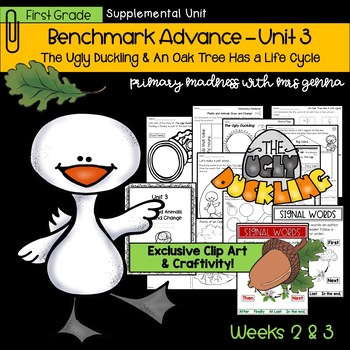 Benchmark Advance - First Grade UNIT 3 with Depth and Complexity Weeks 2 and 3