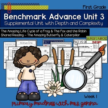 Benchmark Advance - First Grade UNIT 3 with Depth and Complexity - Week 1