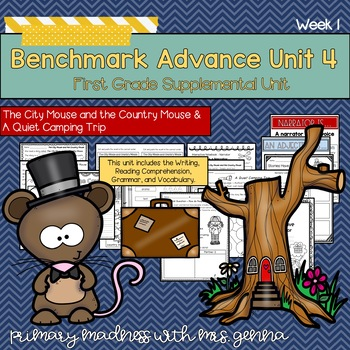 Benchmark Advance First Grade UNIT 4 with Depth and Complexity Week 1