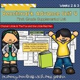 Benchmark Advance First Grade Unit 4 with Depth and Complexity Weeks 2 and 3