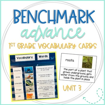 Benchmark Advance 1st Grade Vocabulary Word, Picture & Definition Cards Unit 3