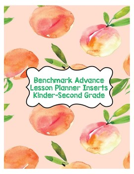 Benchmark Advance Planner Inserts K-2nd Grade