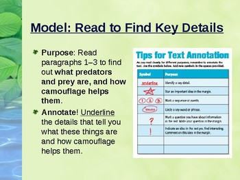 """Benchmark Advance Supports - Third Grade - """"Unit 3 Week 1"""" - Total Package!"""