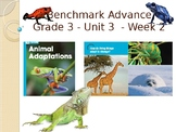 Benchmark Advance Supports - Third Grade - Unit 3 Week 2 - Everything You Need!