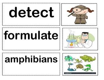 Benchmark Advance Unit 3 Vocabulary Cards