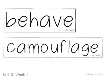 Benchmark Advance Vocabulary Grade 3 Unit 3