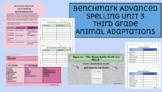 Benchmark Advanced Spelling, Grade 3 Unit 3 Supplemental Material