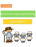 Benchmark Advanced Unit 6 Writing