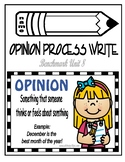 Benchmark Unit 8 Opinion Process Writing Packet