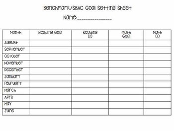 Benchmark Testing Record Sheet *Editable FREEBIE*