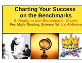 Benchmarks : Charting Your Way to Success in STAAR