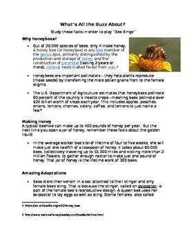 Benefits of Honeybees - Reading and Bingo Game