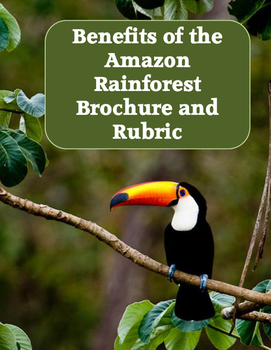Benefits of the Amazon Rainforest Brochure Project and Rubric