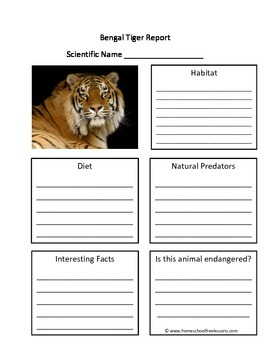 Bengal Tiger Fill in the Blank One Page Animal Report
