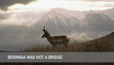 Beringia was not a Bridge