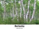 Beriozka (Little Birch Tree):  a song for tom ti