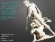 Bernini ~ Sculpture ~ Baroque ~ 123 Slides