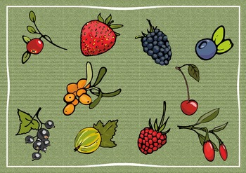Berries CLIPART high resolution (for personal and commercial use)
