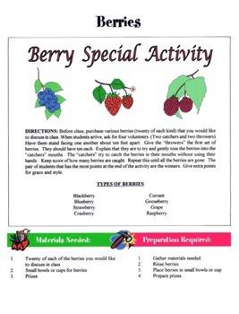 Berries Game / Activity