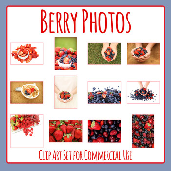 Berry Fruit Photo / Photograph Clip Art Set for Commercial Use
