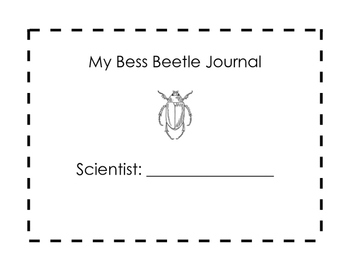 Bess Beetle Observation Journal