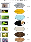 Best Habitat Matching Activity