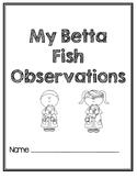 Betta Fish Observations - Animals and Habitats