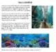 Better Math -  Project #1 - Gary's Goldfish