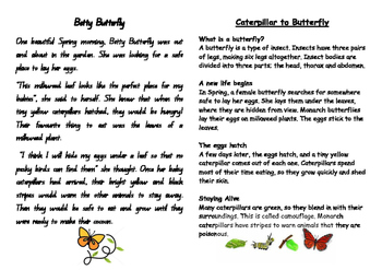 Betty Butterfly - narrative and informative text comprehension
