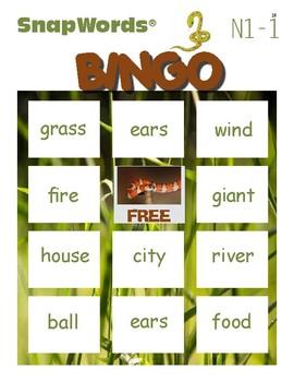 Beyond Sight Words Activities Nouns 1
