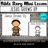 Bible Story Mini Lesson - Jesus Grows Up