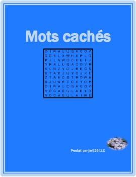 Bien Dit 1 Chapitre 1 Vocabulaire wordsearch