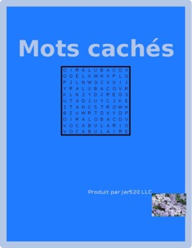 Bien Dit 1 Chapitre 2 Vocabulaire wordsearch